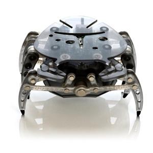 Picture of Hexbug Crab