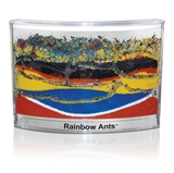Picture of Rainbow Ant™