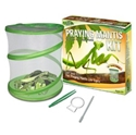 Picture of Green Earth Praying Mantis Kit
