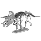 Picture of Triceratops Skeleton
