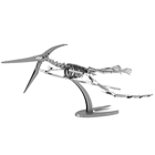 Picture of Pteranodon Skeleton