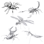 Picture of Set Bugs