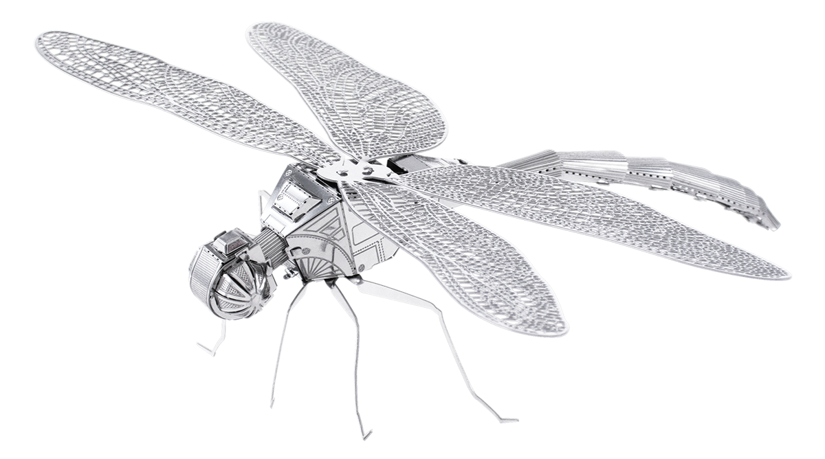 Picture of Dragonfly